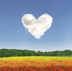 Mein du schatz gedicht bist Liebesgedichte für
